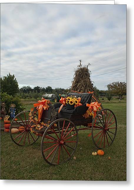 Harvestime Greeting Cards - Antique Buggy in Fall Colors Greeting Card by Kathy Clark