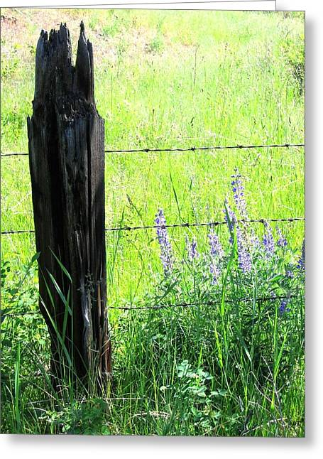 Barbed Wire Fences Greeting Cards - Antique Fence Post Greeting Card by Will Borden