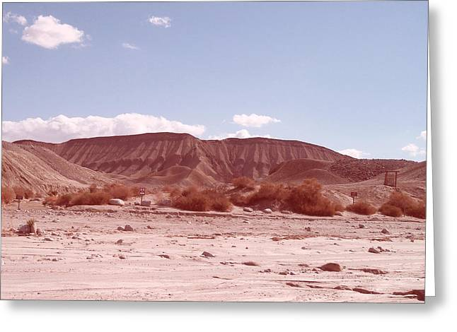 Rural Landscapes Photographs Greeting Cards - Anza Borrego  Greeting Card by Naxart Studio