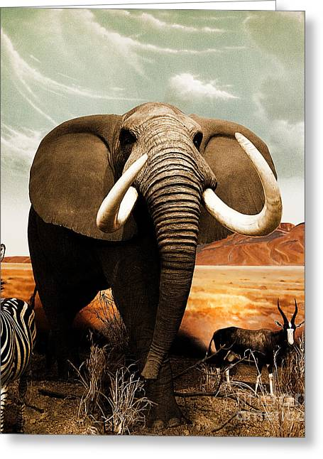 African Elephant Greeting Cards - Apex Herbivore Greeting Card by Arne Hansen