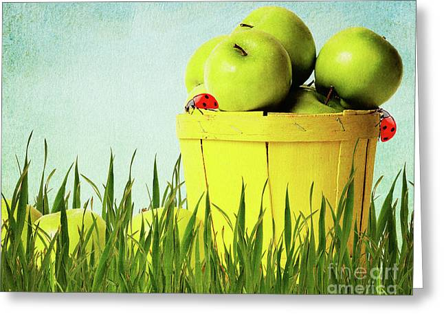 Green Blade Of Grass Greeting Cards - Apples Greeting Card by Angela Doelling AD DESIGN Photo and PhotoArt