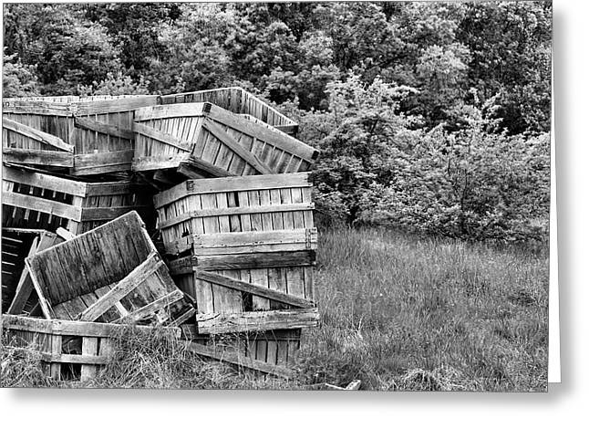 Apple Crates Greeting Cards - Apple Crate BW Greeting Card by JC Findley