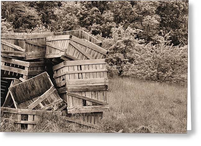Apple Crates Greeting Cards - Apple Crates Sepia Greeting Card by JC Findley