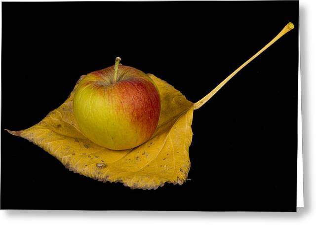 """""""striking Photography"""" Greeting Cards - Apple Harvest Autumn Leaf Greeting Card by James BO  Insogna"""