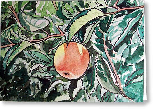 Sketch Greeting Cards - Apple Tree Sketchbook Project Down My Street Greeting Card by Irina Sztukowski