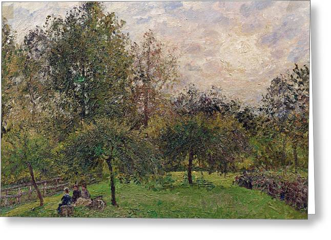 Pissarro Greeting Cards - Apple Trees and Poplars in the Setting Sun Greeting Card by Camille Pissarro