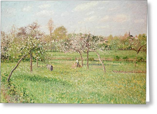 1830 Greeting Cards - Apple Trees at Gragny Greeting Card by Camille Pissarro