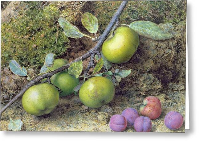 Fruit Art Greeting Cards - Apples and Plums on a Mossy Bank Greeting Card by John Sherrin