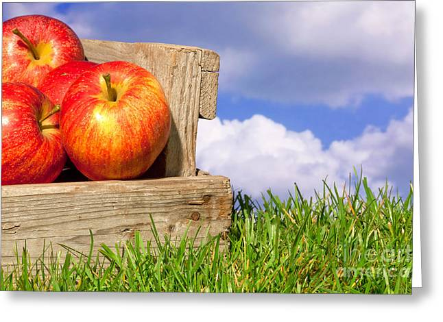 Apple Crates Greeting Cards - Apples in a crate on grass with blue cloudy sky Greeting Card by Richard Thomas