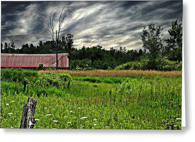 Approaching Storm  Greeting Card by Ms Judi