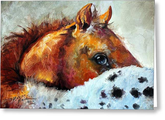 Filly Art Greeting Cards - Appy Colt Greeting Card by Marcia Baldwin