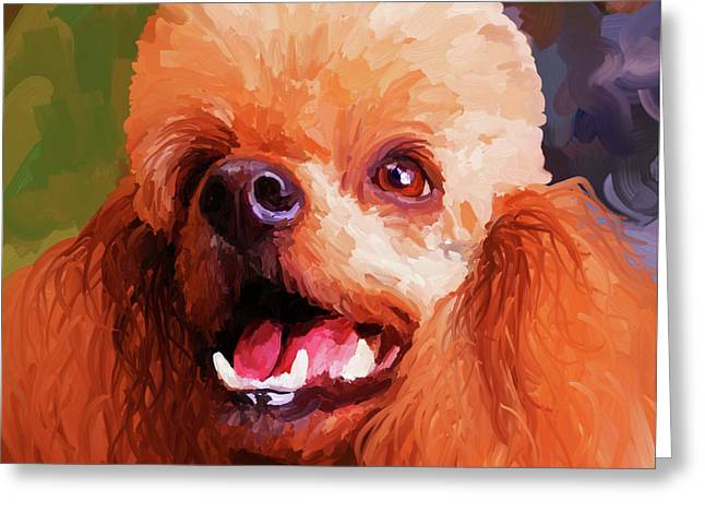 Apricots Paintings Greeting Cards - Apricot Poodle - Square Greeting Card by Jai Johnson