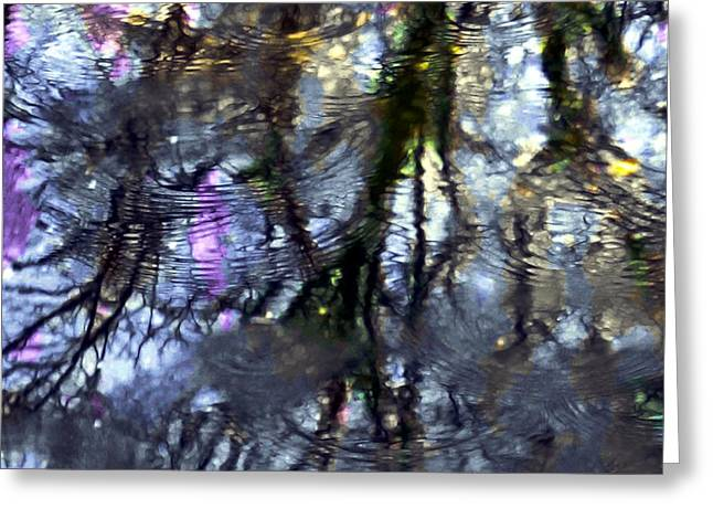 Trees Reflecting In Water Greeting Cards - April Showers 2 Greeting Card by Dale   Ford