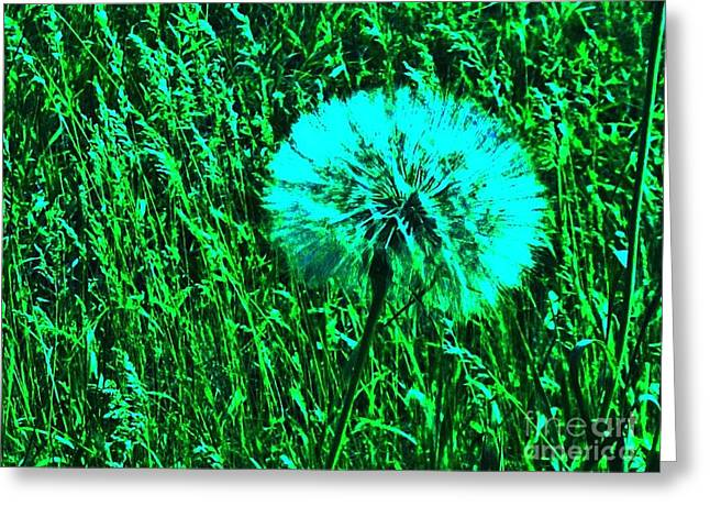 Dandilion Greeting Cards - Aqua Dandilion Greeting Card by Marsha Heiken