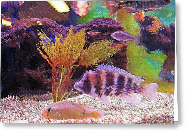 Artistic Fish Abstraction Greeting Cards - Aquarium Art 15 Greeting Card by Steve Ohlsen