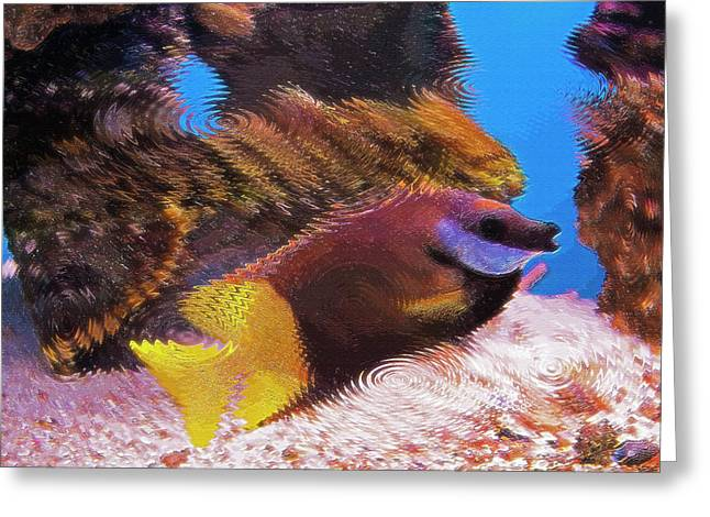 Artistic Fish Abstraction Greeting Cards - Aquarium Art 20 Greeting Card by Steve Ohlsen