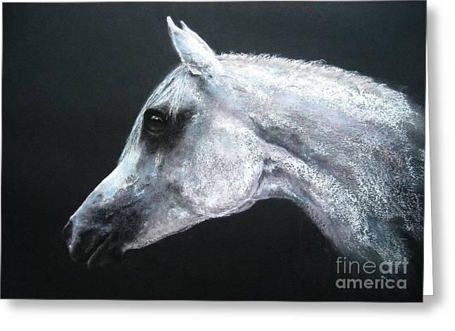 White Horse Pastels Greeting Cards - Arabian King Greeting Card by Sabina Haas