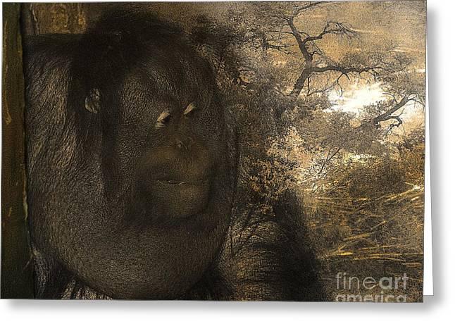 Pittsburgh Zoo Greeting Cards - Arboreal Dreams Greeting Card by Arne Hansen
