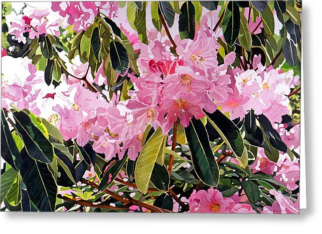 Most Popular Paintings Greeting Cards - Arboretum Rhododendrons Greeting Card by David Lloyd Glover