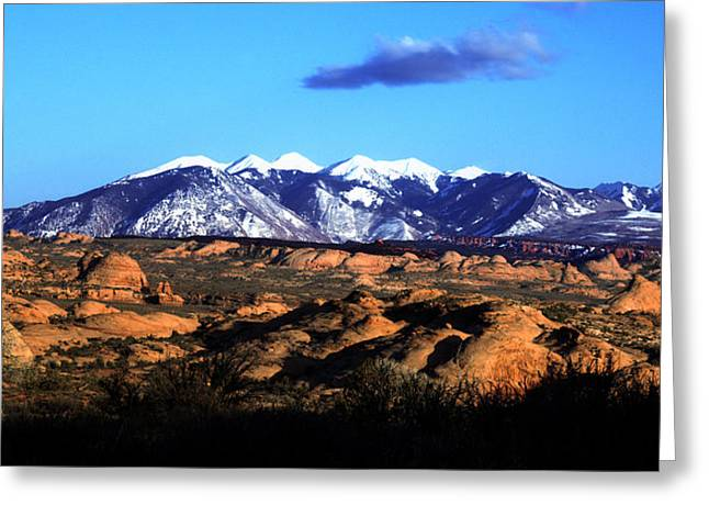 Sandstone Greeting Cards - Arches N P Petrified Dunes Greeting Card by Paul Cannon