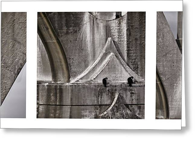 Cormorants Greeting Cards - Architectural Detail Triptych Greeting Card by Carol Leigh