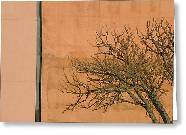 Architecture with Winter Tree Greeting Card by Lenore Senior