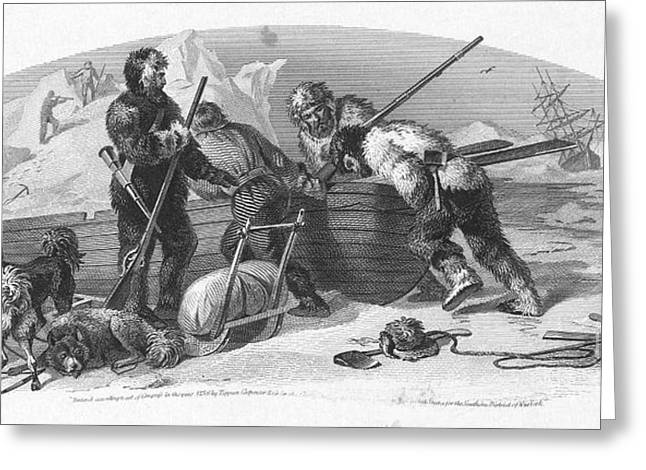 Arctic Dog Greeting Cards - Arctic Exploration, 1856 Greeting Card by Granger