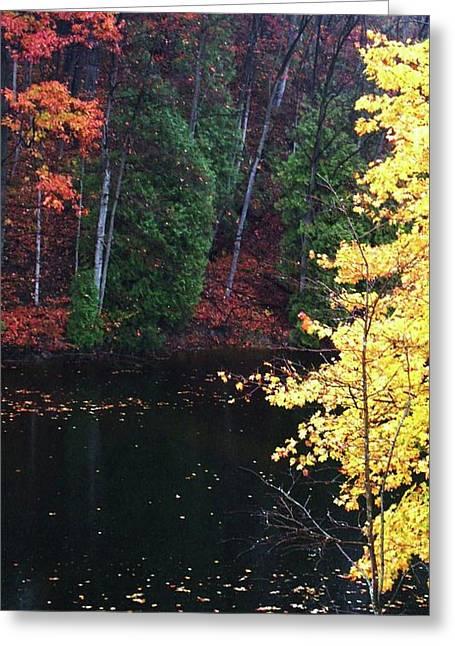 Uncommen Greeting Cards - Ardent Greeting Card by Cyryn Fyrcyd