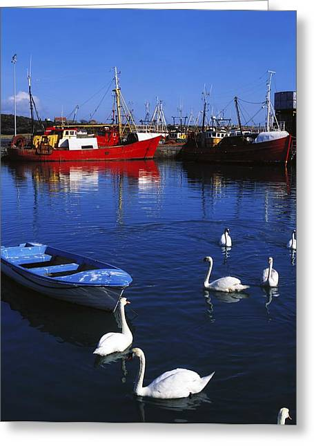Best Sellers -  - Boats In Reflecting Water Greeting Cards - Ardglass, Co Down, Ireland Swans Near Greeting Card by The Irish Image Collection