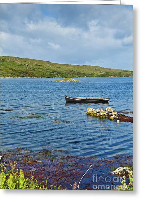 Overcast Day Greeting Cards - Ardmore Bay Greeting Card by Gabriela Insuratelu
