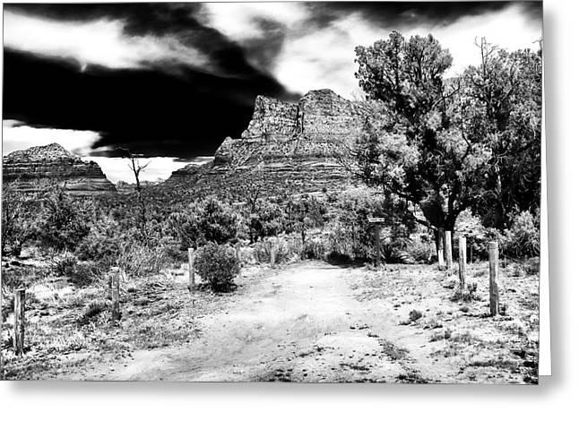 Northern Arizona Greeting Cards - Arizona Walk Greeting Card by John Rizzuto