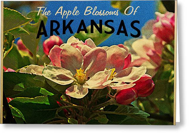 Arkansas Apple Blossoms Greeting Card by Flo Karp