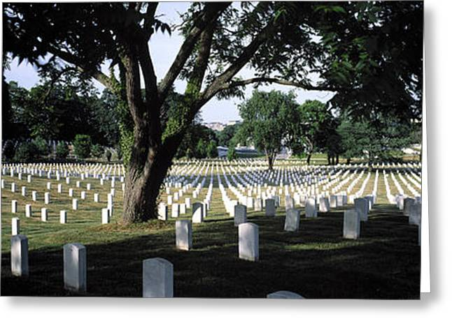Mike Nellums Greeting Cards - Arlington Cemetery Greeting Card by Mike Nellums