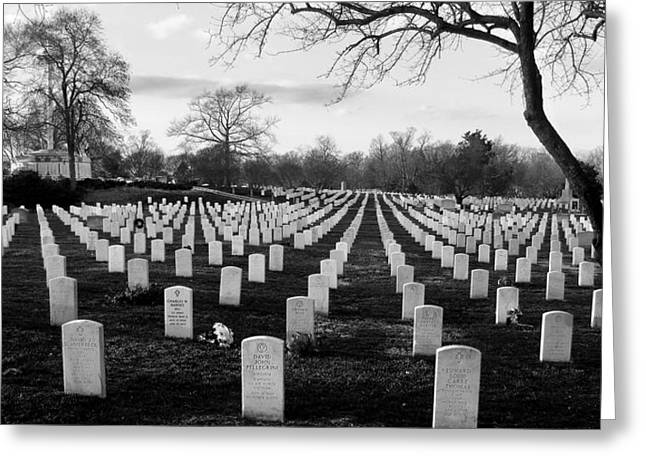 Arlington Photographs Greeting Cards - Arlington National Cemetery Greeting Card by Todd Fox