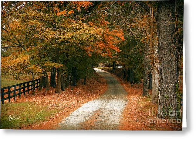Cris Hayes Greeting Cards - Arrival  Greeting Card by Cris Hayes