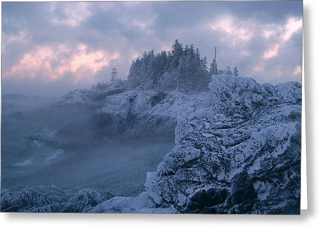 East Quoddy Lighthouse Greeting Cards - Arrival in the cold Greeting Card by Don Dunbar