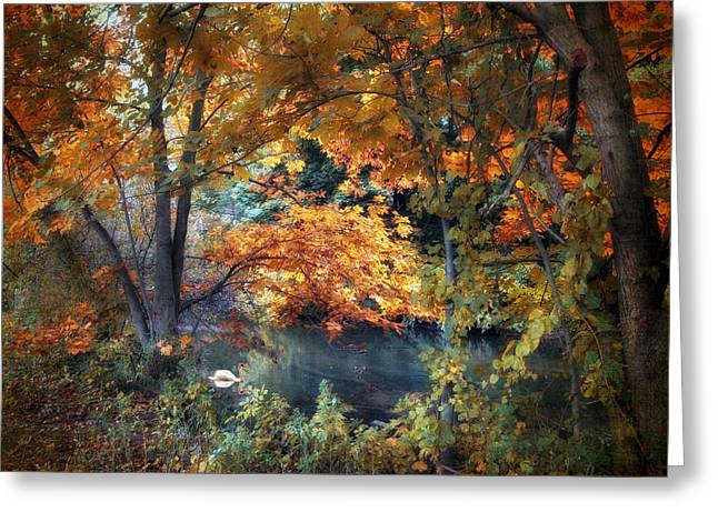 Water Fowl Greeting Cards - Art of Autumn Greeting Card by Jessica Jenney