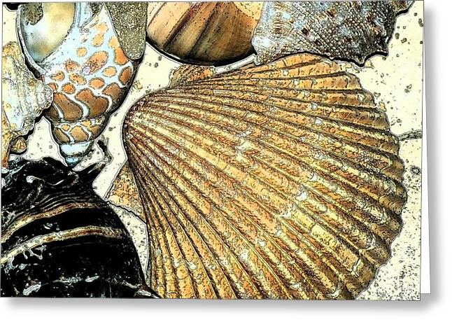 Seashell Digital Art Greeting Cards - Art Shell 2 Greeting Card by Stephanie Troxell