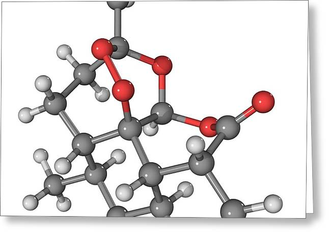 Artemisinin Malaria Drug Molecule Greeting Card by Laguna Design