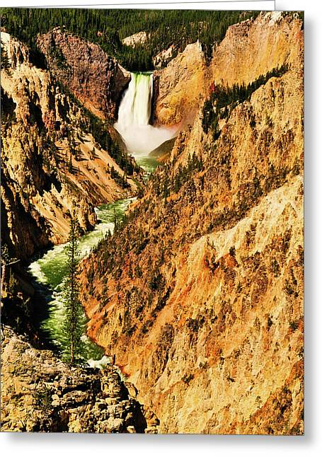 Grand Canyon Of The Yellowstone Greeting Cards - Artist View Greeting Card by Greg Norrell