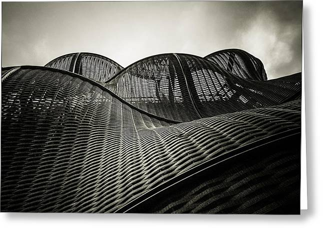 Runnycustard Greeting Cards - Artistic Curves Greeting Card by Lenny Carter