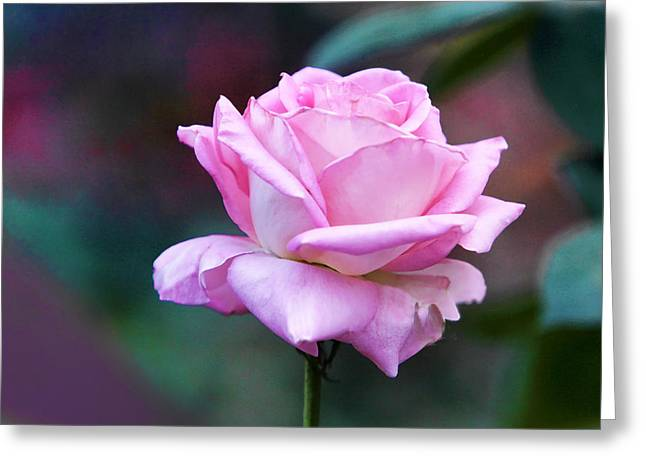 Purple Pyrography Greeting Cards - Artistic Pink Rose Greeting Card by Linda Phelps