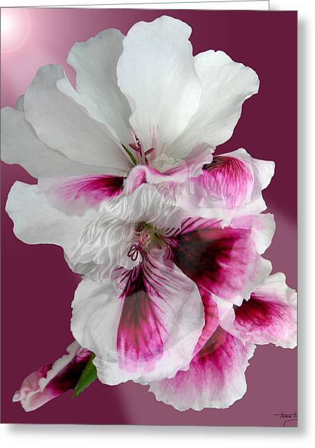 Floral Digital Art Digital Art Greeting Cards - As One Greeting Card by Torie Tiffany