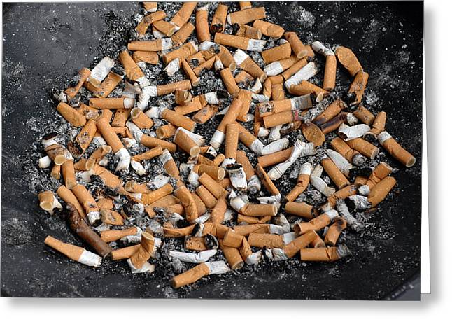 Problem Greeting Cards - Ashtray full of cigarette stubs Greeting Card by Matthias Hauser