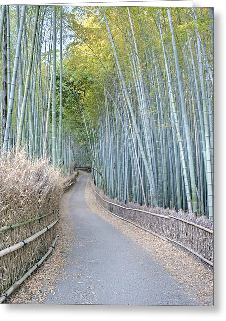 Recently Sold -  - Bamboo Fence Greeting Cards - Asia Japan Kyoto Arashiyama Sagano Greeting Card by Rob Tilley