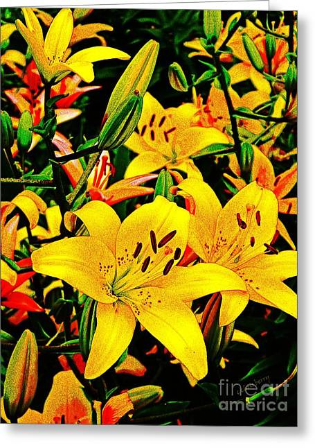 Yearly Greeting Cards - Asiatics in May  Greeting Card by Chris Berry
