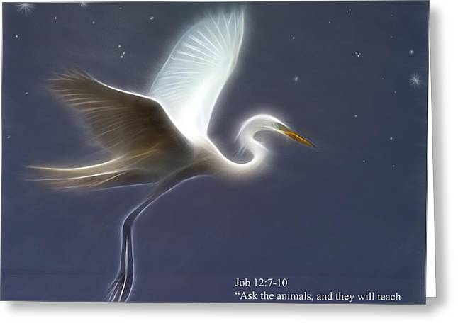 Ask The Animals Greeting Card by Hazel Billingsley
