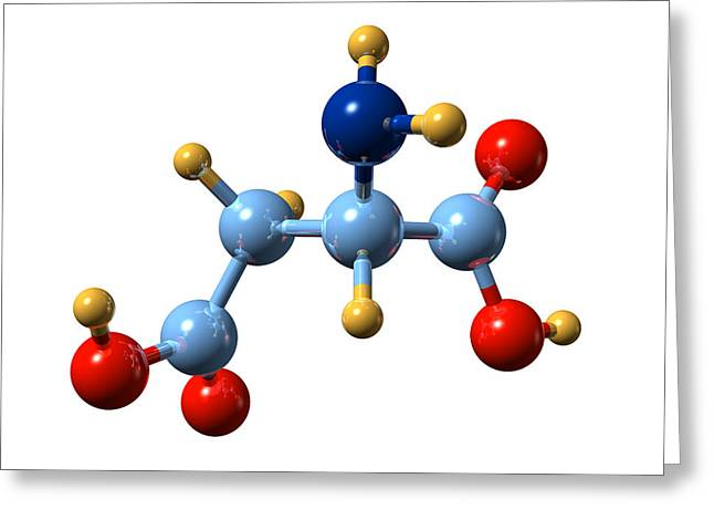 Essential Greeting Cards - Aspartic Acid, Molecular Model Greeting Card by Dr Mark J. Winter