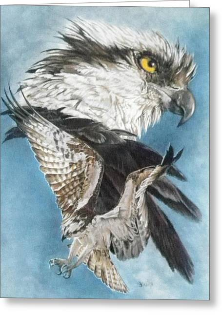Osprey Drawings Greeting Cards - Assail Greeting Card by Barbara Keith