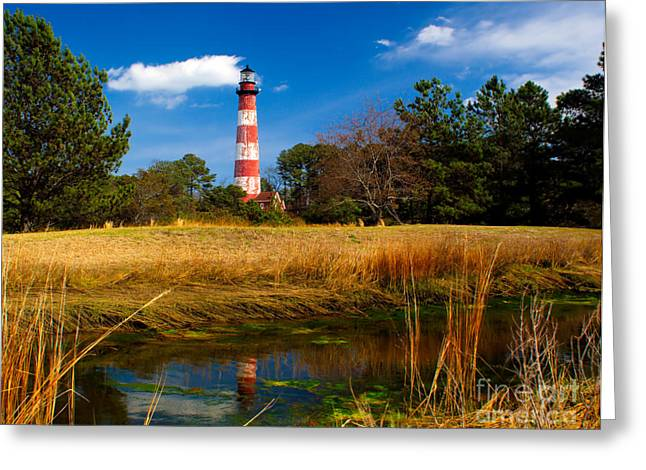 Delmarva Greeting Cards - Assateague Lighthouse Reflection Greeting Card by Nick Zelinsky